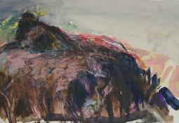 Kerry McInnis 'Ikara Hillside' mixed media on paper 35 x 50cm