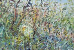 Snow Drops and Blue Bells in Rodd Wood by Celia Perceval
