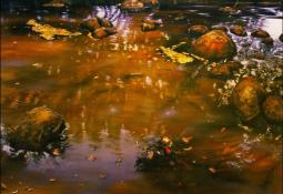 Autumn Pool by Neil Taylor
