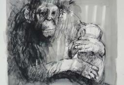 The Newborn (Zoo Series) by Margaret Woodward